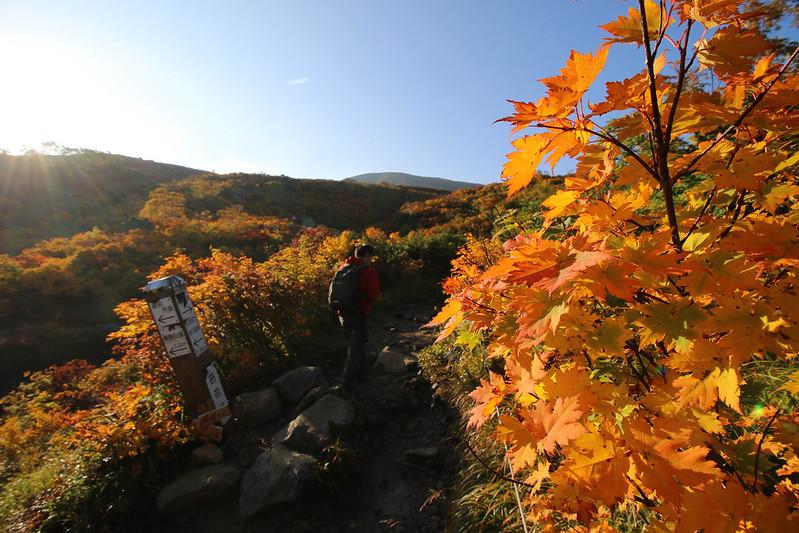 2014-09-28_00164_栗駒山.jpg