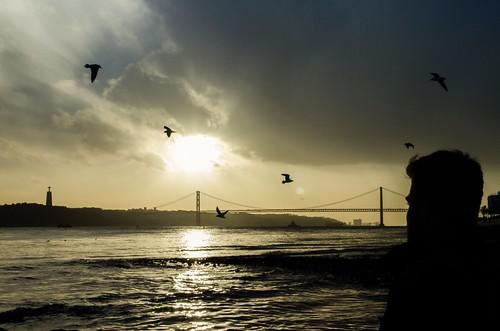 sunset seagulls clouds shadows lisboa lisbon tage tejo darkclouds coucherdesoleil lisbonne mouettes