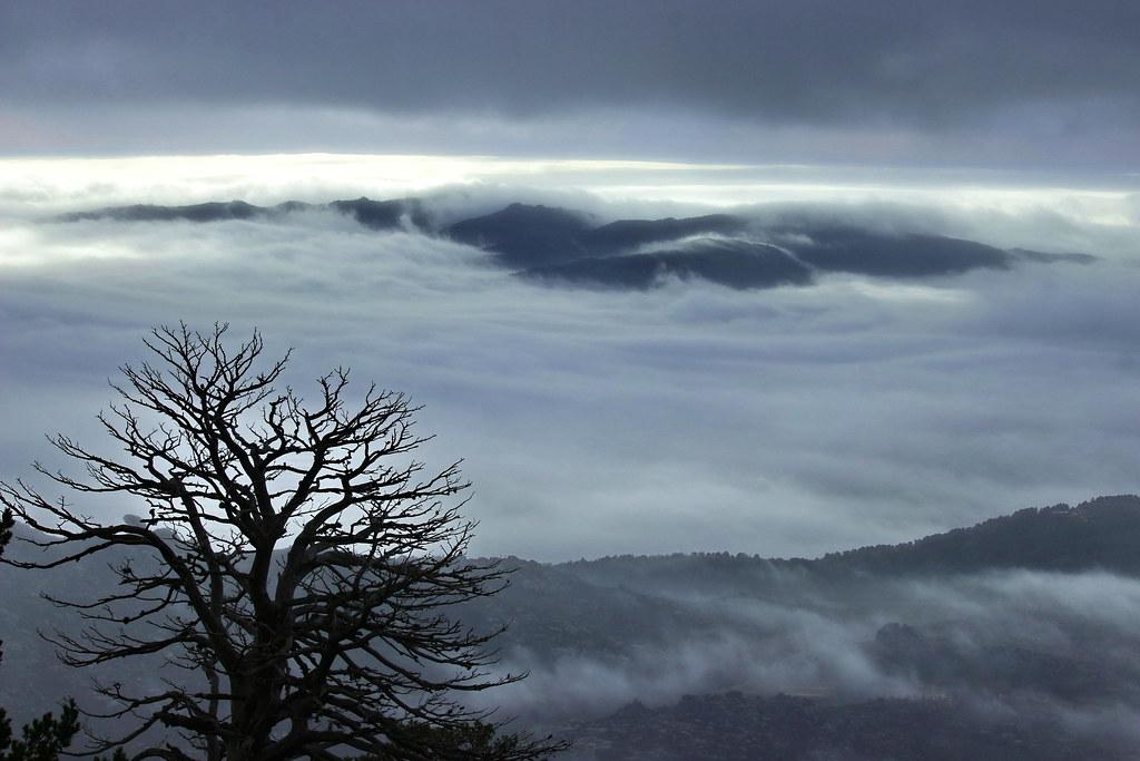 Ocean of clouds.