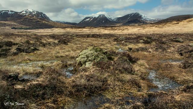 Barren And Saturated Glen Coe .. Scotland