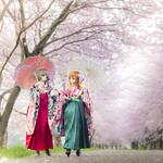 桜夢魅し大正浪漫