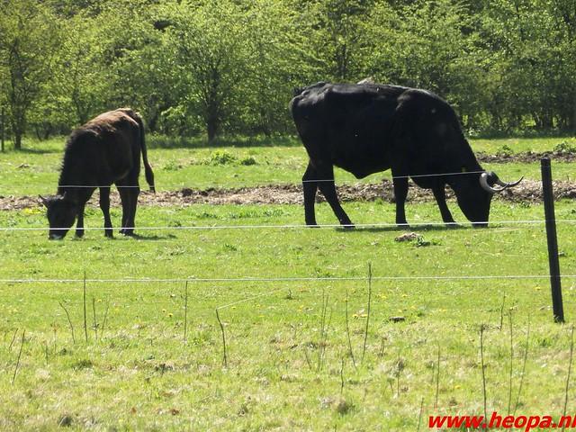 2016-04-20 Schaijk 25 Km   Foto's van Heopa   (58)