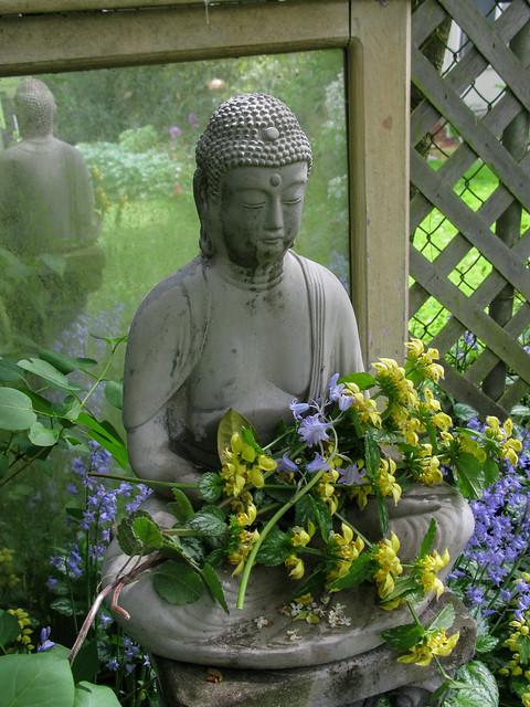 The Buddha's Bouquet