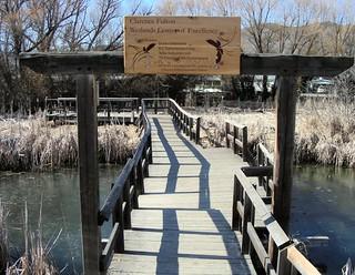 vernon-wetlands-3