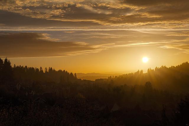 Suburban Golden Sunset