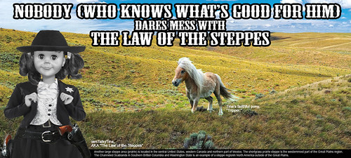 The Law of the Steppes #2   by iamtalkytina