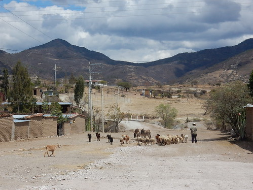 Onderweg naar Hierve el Agua - 1