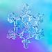 Vibrant Crystal by Don Komarechka
