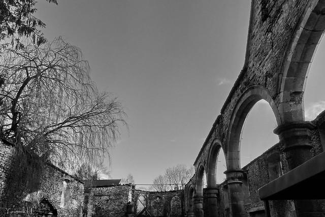 église gothique en ruine à vedrin (belgium)DSC00228
