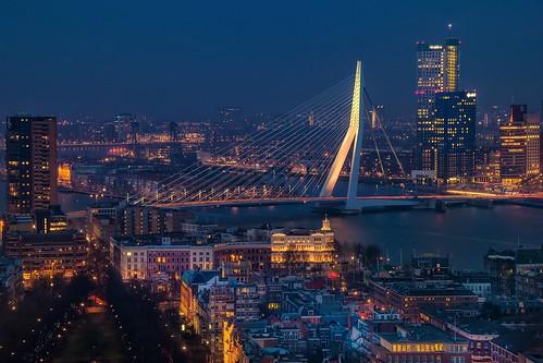 city longexposure travel bridge blue tower night rotterdam cityscape euromast nikond5300