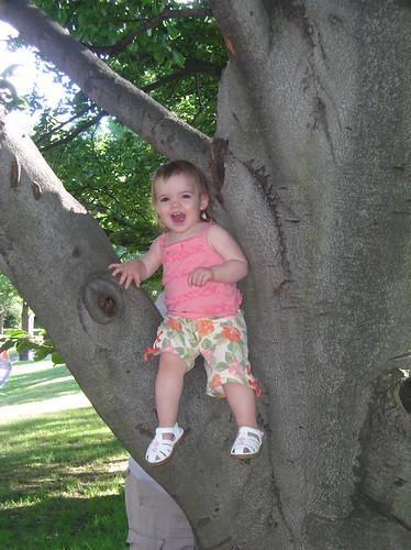 Princess in a tree I