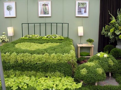 Fern Bed - 2