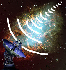 Signal Frequency