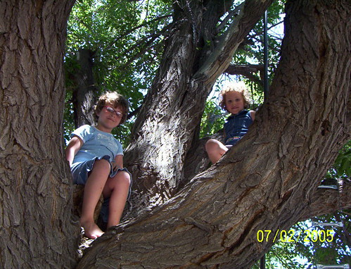 grandkids 2005 july 4 002