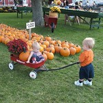 Annabelle and Ryan at the Punkin Patch