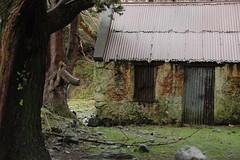 Derelict farm building-1