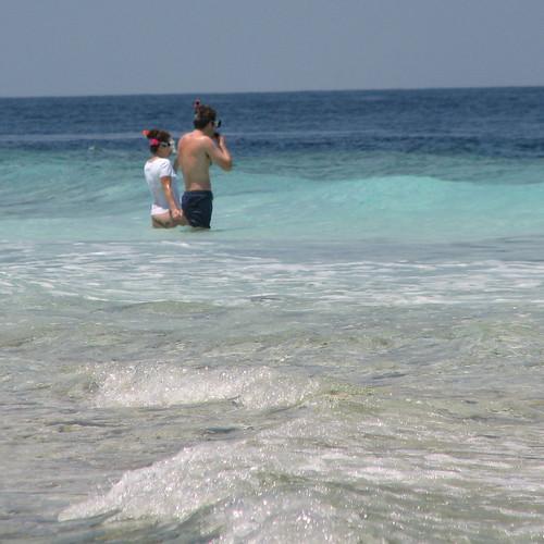 ocean beach snorkelling maldives filitheyo filitheyoislandresort