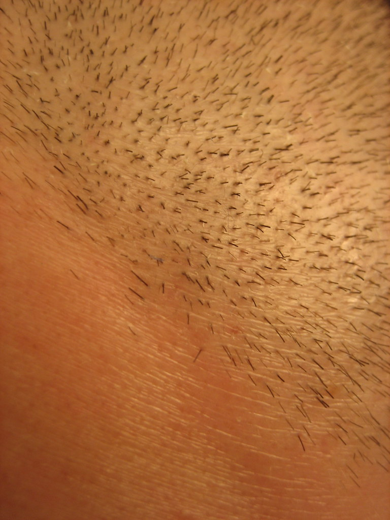01 04 07 - Freshly Cut Hair