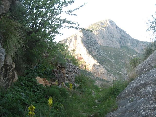 Monte COnsolino dalla Scifulareda di mandarano