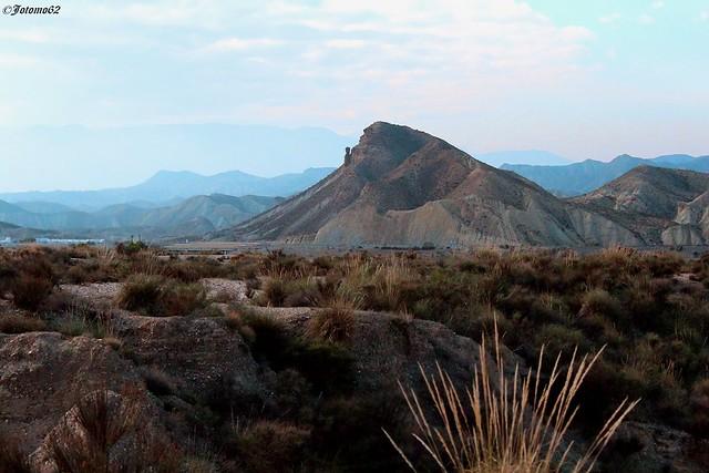 El Guardian del Desierto