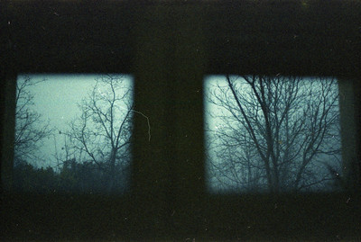 Recherche Flickr