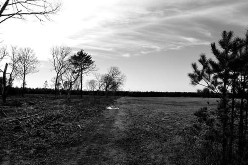 new england white black field clouds richmond rhodeisland greyscale