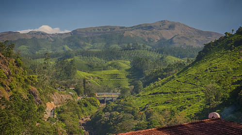 mountains green river stream dam kerala valley munnar godsowncountry