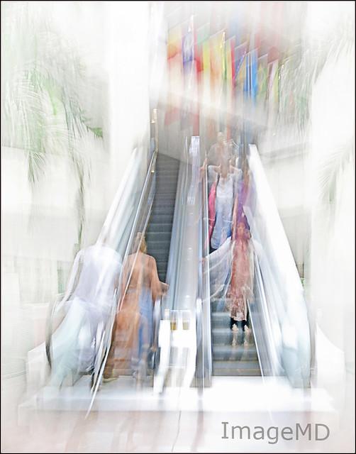 Collegiate Escalators