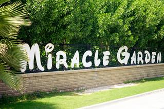 Miracle Garden | by oiva_eskola