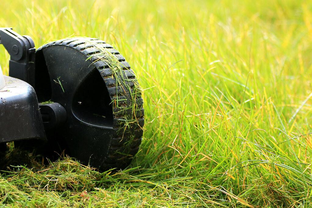 Ruota del tosa erba sul prato