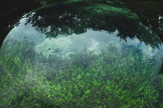 Dunia Air (Agus Wiryadhi Saidi)
