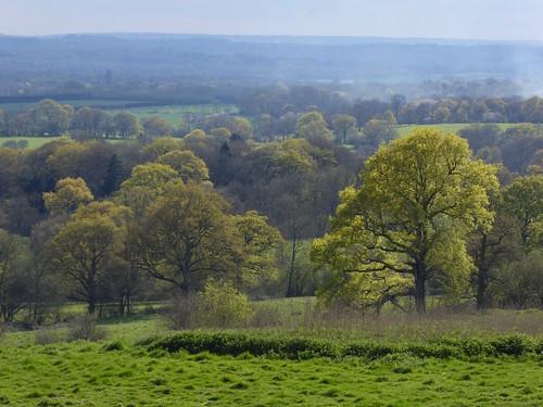 Escarpment view Yalding to Sevenoaks walk