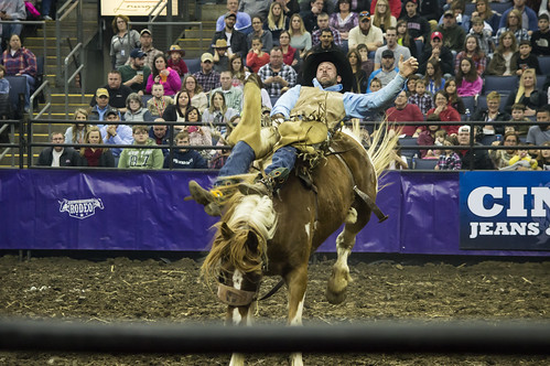 World's Toughest Rodeo 1-2016 | by Paula R. Lively