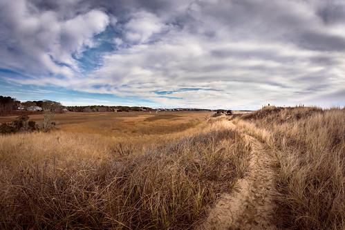 winter color landscape ma outdoors seascapes capecod massachusetts dunes wideangle fisheye chatham shore beaches marsh seashore sanddunes wetland forestbeach superwideangle expansive southchatham nikond7200 rokinon8mmf35hdfisheye andrewscholtz ascholtz101 adobelightroomcc