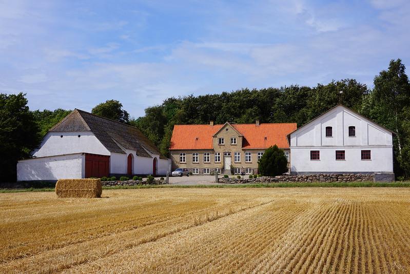 Tjoernbjerg-Marker-2014 (17)
