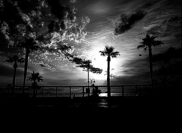 Black and White (Sunset)