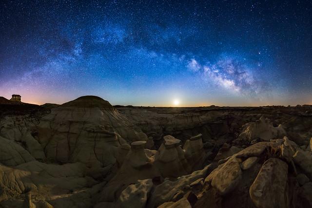 Desert Nocturna
