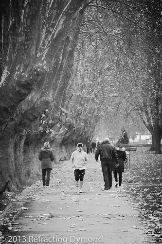 Run Along the Rhine | by refractingdymond