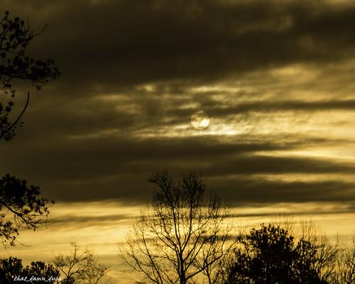 nature sunrise dawn unitedstates southcarolina