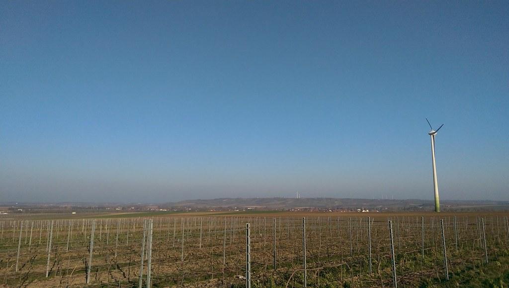 Wetter Rheinhessen