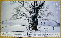 great stamp Germany 55c winter landscape (Winterlandschaft, hiver, tél, ウインター, el invierno, 겨울, inverno, 冬, vinter, зима́, zima, talvi, ziema; tree, Baum) timbres Allemagne sellos Alemanha selos Alemania francobolli Germany postzegel 우표 독일 유럽  γραμματόση