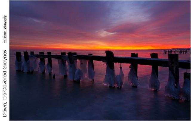 Dawn, Ice-Covered Groynes