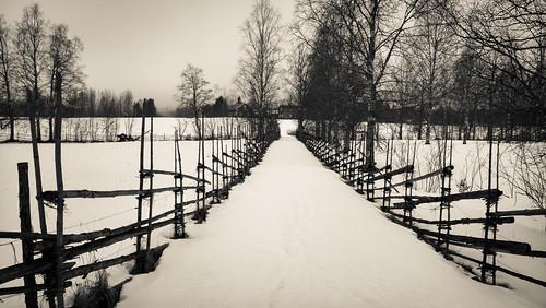 travel blackandwhite bw snow tree monochrome fence finland landscape spring raw outdoor symmetry microsoft lumi puu xl aita 950 petäjävesi dng kevät lumia leadingline centralfinland pureview iphoneography lumia950 lumia950xl mobiograpfy