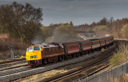 "Class 52 ""Western"" no D1015 ""Western Champion"" at Clay Cross (Tupton) on 10-04-2016 with the return leg of the ""Maybach Yorky"" Charter from York to Derby 
