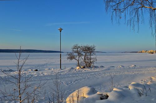 winter lake landscape blue snow tree finland lahti lunta luonto talvi nature nikon järvimaisema järvi vesijärvi lamppost d3200 nikond3200 europe