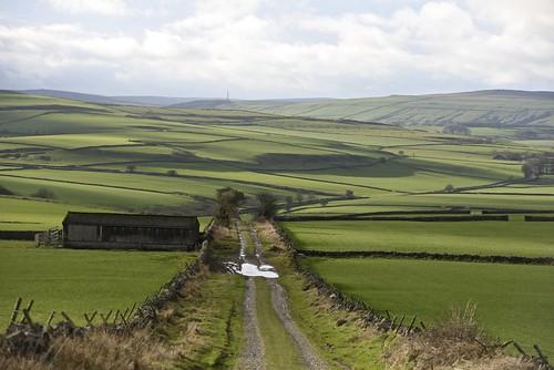 green peakdistrict lane fields countrylane drystonewalls wheston