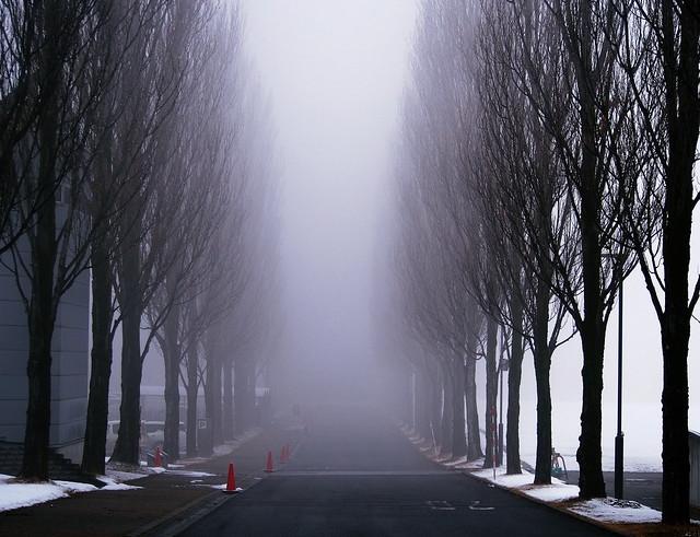 A foggy winter morning @ u-aizu