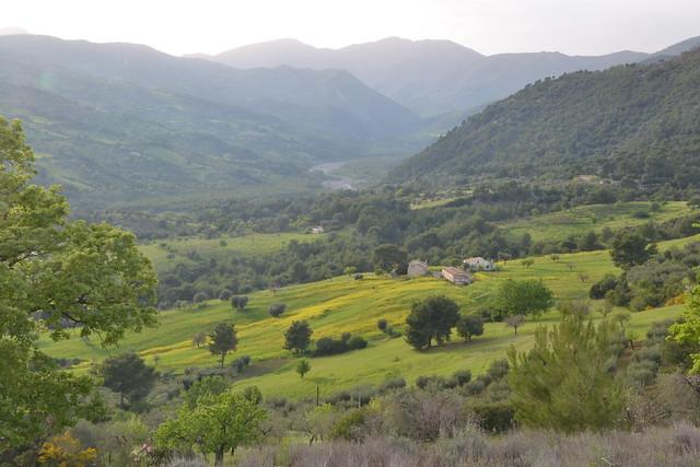 Calabria, Paesaggio campestre - Calabria, Landscape country