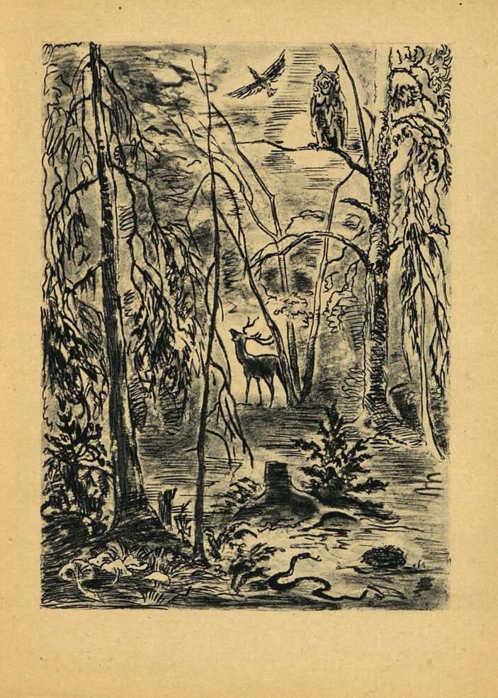 Иллюстрация 4 из 7 для Шурале - Габдулла Тукай | Лабиринт - книги ... | 985x703
