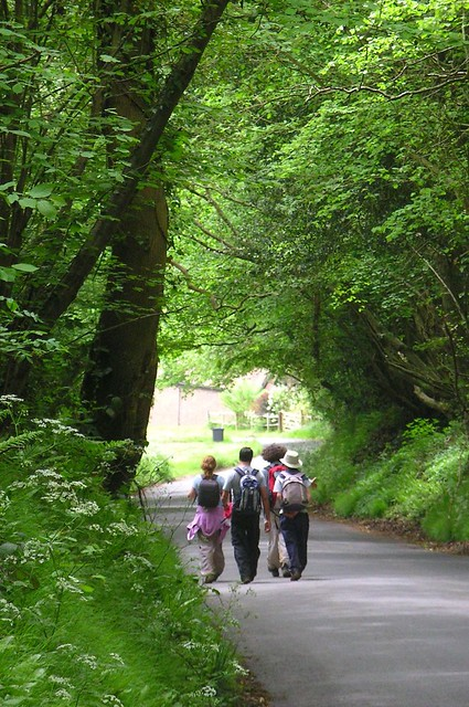 Book 3, Walk 3, Cowden to Eridge 2 Midweek Day Walk, 17 May '06